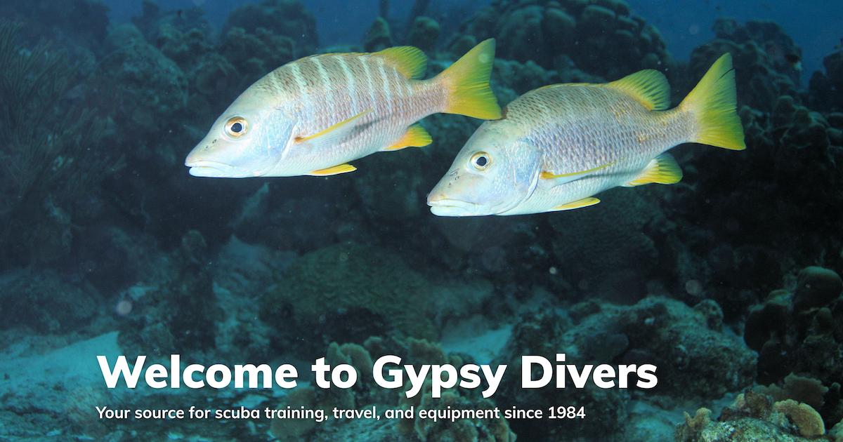 Trip Application   Gypsy Divers