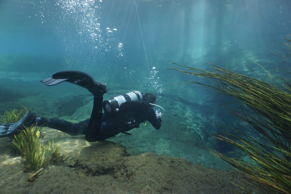 Dive leader going down Rainbow River