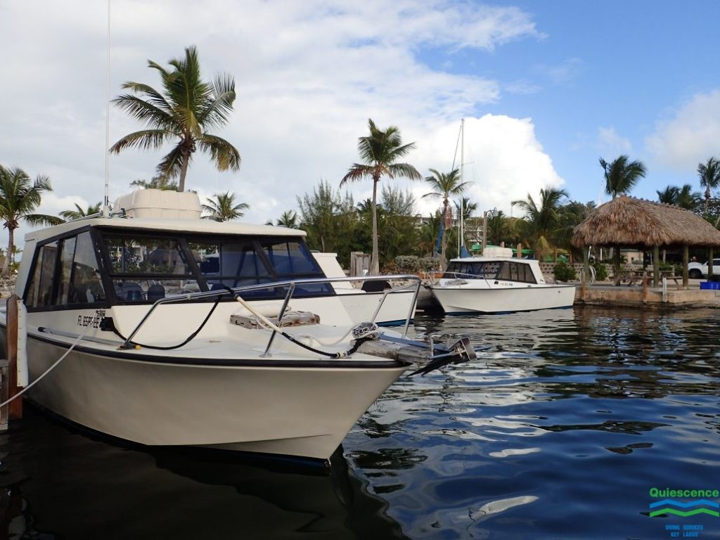 The 6 pack boats in Key Largo