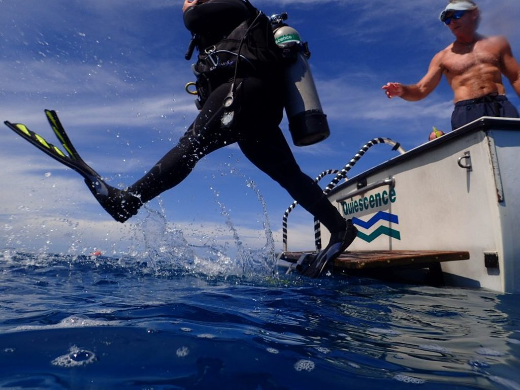 Diver giant striding off boat in Key Largo