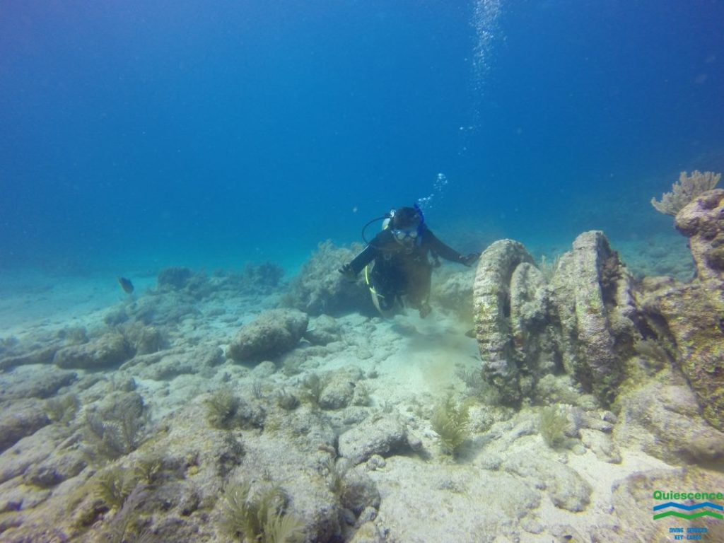 Diver in Key Largo