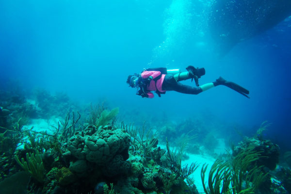 Scuba Diver in the Bahama ocean