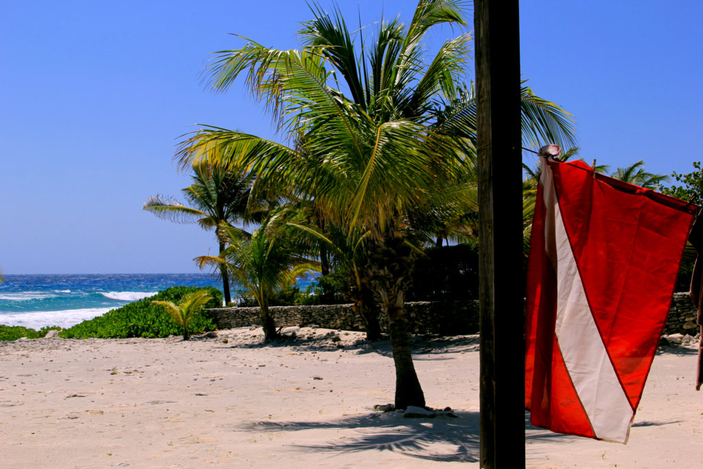 A dive flag blowing in front of the ocean in the Caymans