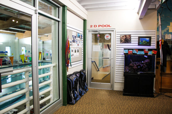 The back of the store floor, the doors to the balcony of the pool area to your left with the door to the hall in front of you.