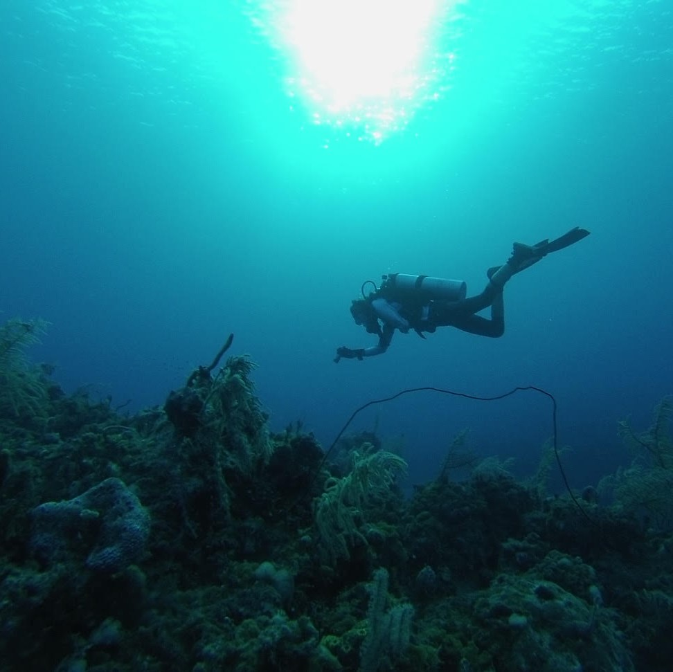 A diver taking a picture in the Bahamas
